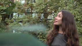 Pretty brunette girl walking through tropical plants in greenhouse. 4K clip. Beautiful brunette girl walking through tropical plants in big greenhouse. 4K video stock video footage