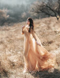 Pretty brunette girl. Walks in the forest . She is dressed in luxurious, golden dress. The wind playing with her hair and fabrics. The beautiful weather of Royalty Free Stock Image