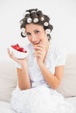 Pretty brunette in hair rollers having a bowl of strawberries Royalty Free Stock Image