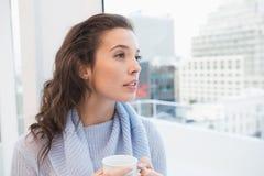 Pretty brunette having coffee by the window Stock Photo