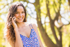 Pretty brunette having phone call in the park Stock Image
