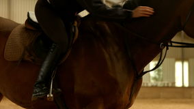 Pretty brunette with her horse stock video footage
