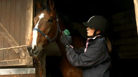 Pretty brunette with horse in stable stock footage
