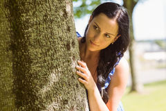 Pretty brunette leaning against a tree Royalty Free Stock Images