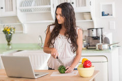 Pretty brunette preparing salad and using laptop Royalty Free Stock Images