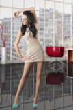 Pretty brunette with short dress Royalty Free Stock Photo