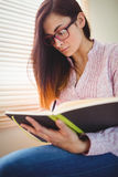Pretty brunette studying beside window Royalty Free Stock Image