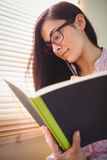 Pretty brunette studying beside window Royalty Free Stock Photography