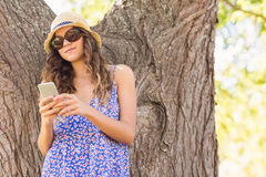 Pretty brunette texting in the park Royalty Free Stock Photos