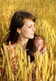 Pretty brunette in a wheat Stock Photography