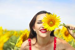 Pretty brunette woman in sunflower field. Pretty brunette woman wearing red polka dots dress in sunflower field royalty free stock images