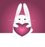 Pretty bunny Stock Image