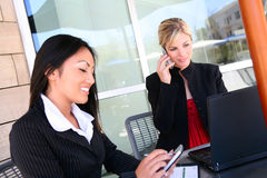 Pretty Business Women Working Stock Image