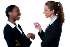 Pretty Businesswomen discussing Stock Images