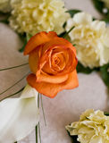 Pretty buttonhole Royalty Free Stock Image