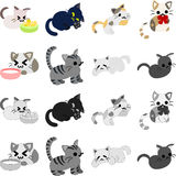 The pretty cats Stock Photography