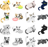 The pretty cats Royalty Free Stock Image