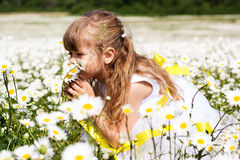 Pretty child girl at camomile field Royalty Free Stock Images