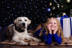 Pretty child girl with dog at home near christmas Royalty Free Stock Image