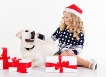 Pretty child girl with dog are sitting in studio Stock Images