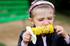Pretty child girl eats a boiled corn Stock Photos