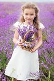 Pretty child girl in lavender field with basket of Royalty Free Stock Images