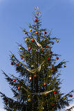 Pretty Christmas tree against a blue sky Royalty Free Stock Photography