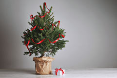 Pretty Christmas Tree With A Present Stock Photography