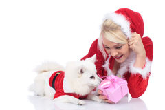 Pretty christmas woman with white dog and gift box Royalty Free Stock Photo