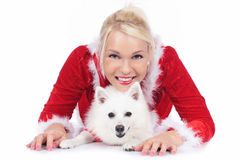 Pretty christmas woman with white dog Stock Image