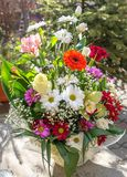 Colorful Flower bouquet. Pretty colorful flower bouquet in sunshine Stock Images