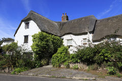 Pretty cottage in Somerset. A pretty thatched cottage in the county of Somerset in the UK Royalty Free Stock Image