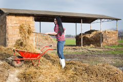Pretty country woman working with animal manure Stock Photos