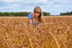 Pretty coutry girl in wheat Stock Photo