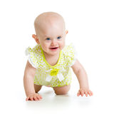 Pretty crawling baby girl Royalty Free Stock Photo