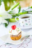 Pretty cupcake with butter icing and red rose bisc Stock Photography