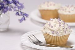 Pretty Cupcakes Stock Images