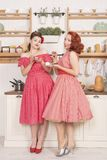 Beautiful elegant retro women standing in their kitchen and smiling stock photo