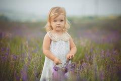 Pretty cute little girl is wearing white dress in a lavender field holding a basket full of purple flowers.  royalty free stock image