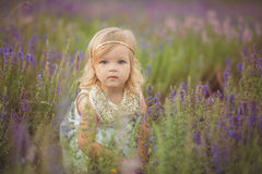 Pretty cute little girl is wearing white dress in a lavender field holding a basket full of purple flowers.  Royalty Free Stock Image