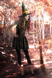 Pretty and cute witch with broom inside a forest Royalty Free Stock Photography