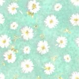 Pretty Daisy Background Gentle Ditsy Garden Navy Variety Ju Stock Photography