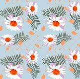 Pretty daisy floral print, seamless background vector illustration
