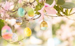 Pretty decorated Easter eggs hanging on a tree branch on a sunny royalty free stock photography