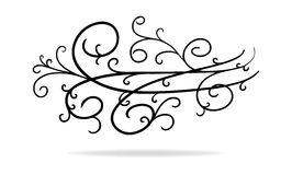 Pretty design element with curls vines swirls and fancy pattern divider royalty free stock photos