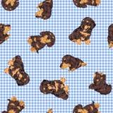 Pretty dog pattern Royalty Free Stock Photography