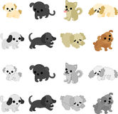 The pretty dogs Stock Photography