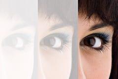 Pretty Eye Closeup Royalty Free Stock Photo