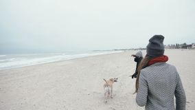 Pretty young girl is playing with a dog on the beach. Happy family on vacation. Pretty family is playing with a dog on the beach. Happy family on vacation stock footage