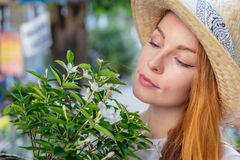 Farmer girl carrying plant Stock Image